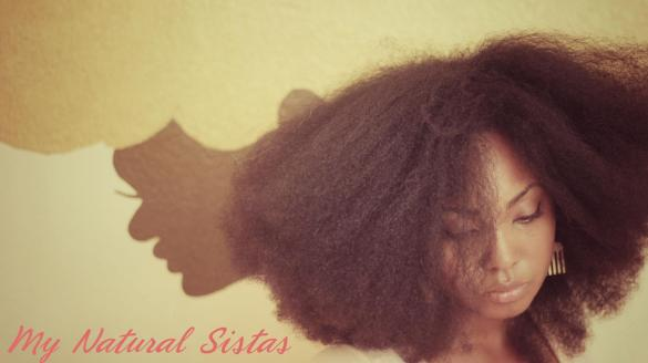 Natural Hair is Beautiful (17)