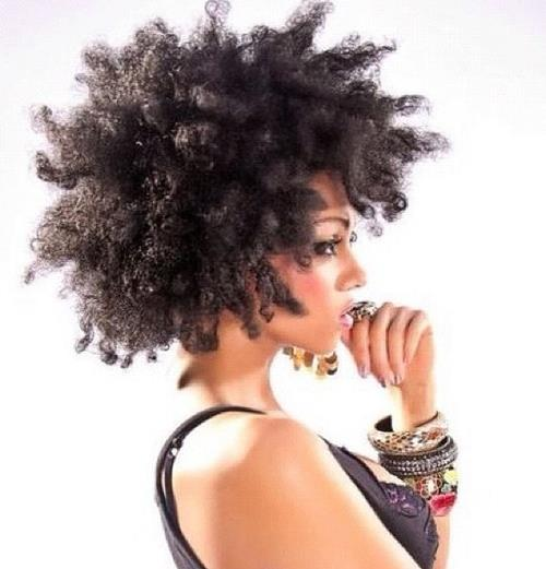 Natural Kinky Hair Inspiration (9)